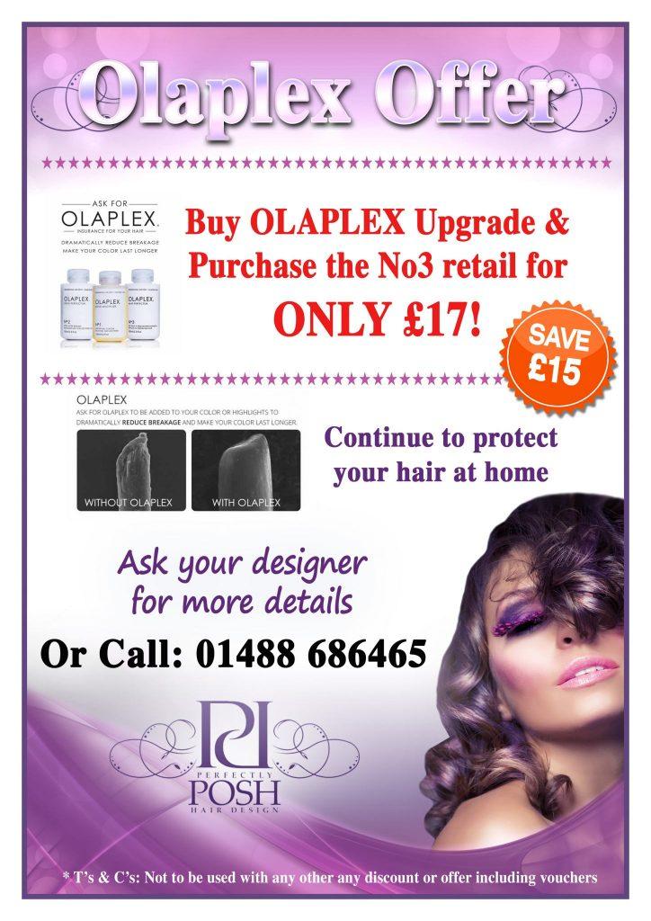olaplex offer Perfectly Posh Hair Design