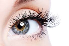 eye lash tinting at perfectly posh beauty salon hungerford